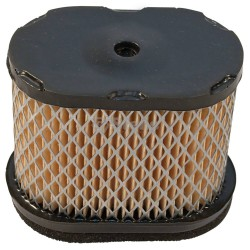 Air Filter Briggs & Stratton